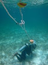 Jonathan of Dive Exuma finishes an installation by Guana Cay.
