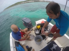 Chris Minns works with Dr. Dahlgren to prepare corals for the new line nursery.